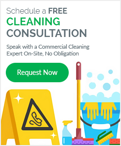 Schedule a FREE CLEANING CONSULTATION